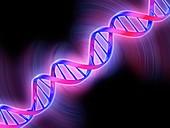 DNA molecular model, illustration