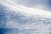 Wind-blown snow