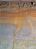 Cryoturbation in soil lacquer profile