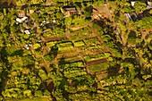 Small-scale tropical farming, aerial photograph