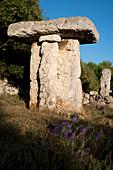 Talaiotic prehistoric monument, Menorca