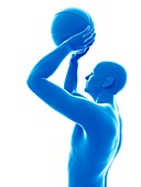 Basketball player holding ball, illustration
