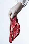 Person holding raw meat
