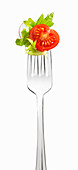 Kopfsalat, Tomate und Radieschen auf Gabel