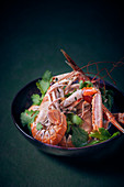 Scampi in a spicy broth with coriander leaves