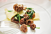 Pasta with spinach and morel mushrooms (close-up)