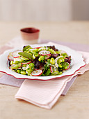 A spring salad with fennel, beans and radishes