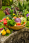 A basket of fruit and vegetables in a garden