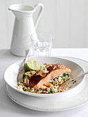 Spicy salmon with almond flakes on couscous (Morocco)