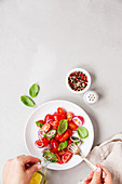 Fresh salad with tomato, basil, onion and olive oil