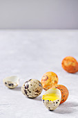 Easter greeting card with colored yellow orange quail eggs with yolk and shell over white texture background