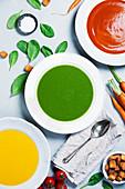 Dreierlei Cremesuppen: Kürbis-, Tomaten- und Spinatsuppe (Aufsicht)