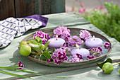 Untersetzer mit Blüten von Dianthus barbatus ( Bartnelken ), Malus