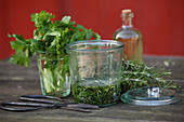 Fresh herbs for spring facial water