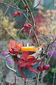 Tasse als Windlicht an Baum gehängt, dekoriert mit Erdbeer-Blättern