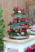 Etagere mit Mini-Weihnachtssternen und Deko