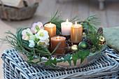 Adventskranz in silberner Schale mit Christrosen
