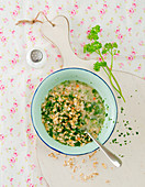 Oat soup with parsley