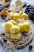 Aged mozzarella cheese and different appetizers for wine