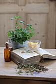 Heilkundebuch und Zutaten für die Herstellung einer Melissesalbe