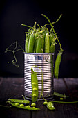 Green Pea Pods in a Metal Tin