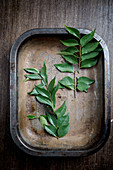 Curry Leaves in a rusted Tray