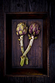 Two Artichokes on a wooden tray