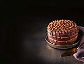 Schoko-Orangen-Torte mit gebrannter weißer Schokoladenganache