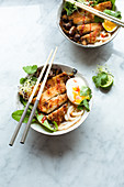Udon noodle soup with Katsu escalope, chard, egg, fried mushrooms, coriander, lime and onion shoots