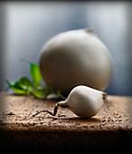 weiße Zwiebeln