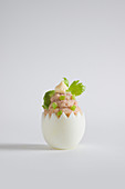An egg filled with tuna and celery mousse with avocado