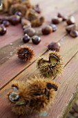Edible chestnuts on a wooden table