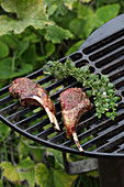 Rack of lamb with herbs on a grill