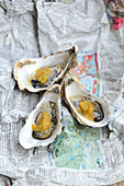 Oysters in an orange and ginger sauce