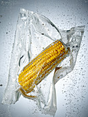 A corn cob in a sous vide bag