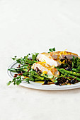 Turkey, snow pea and wild rice salad