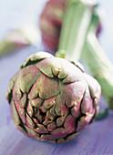 A fresh artichoke