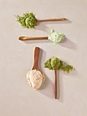 Pumpkin seed flour, pea flour, moringa powder and red lentil flour on wooden spoons