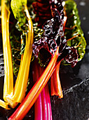 Steamed colourful chard (close-up)