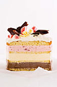 Neapolitan ice-cream cake