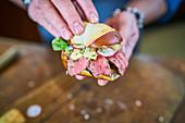 Bavarian Chivito in lye bread rolls