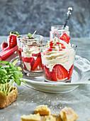 Strawberry tiramisu with rhubarb