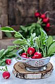 Fresh radishes in a colander