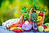 Frisch geerntetes Gemüse auf Gartentisch