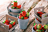 Fresh strawberries in mini crates and clay pots