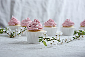 Vegan vanilla and semolina cupcakes with raspberry frosting