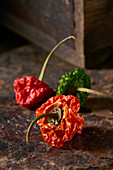 Dry chili peppers on a rusty surface