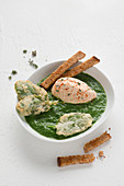 Cream of spinach and chard soup with pepper cream and bread sticks
