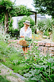 Woman wearing summer hat harvesting vegetables in garden