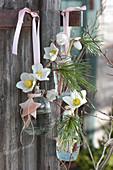 Flaschen mit Blüten von Christrose und Kiefer am Pfosten aufgehängt